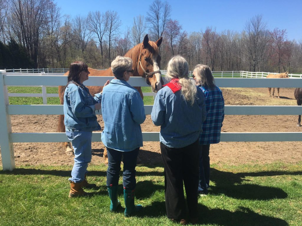 Black Horse Spirit & Mister Dare welcome experiential learners to Rivendell Farm.