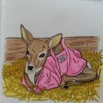 Deirdre_pink jacket_coloring book